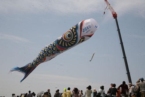 埼玉県加須市「世界一のジャンボ鯉のぼり 」
