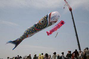 「埼玉県加須市世界一のジャンボ鯉のぼり」と沖縄県糸満市平和記念公園の30mこいのぼり1匹