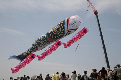 「埼玉県加須市世界一のジャンボ鯉のぼり」と沖縄県糸満市平和記念公園の30mこいのぼり3匹の大きさ比較